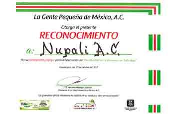 La Gente Pequeña de México, A.C.